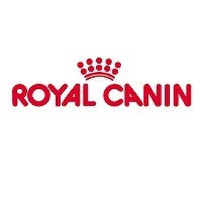 avatar for Royal Canin