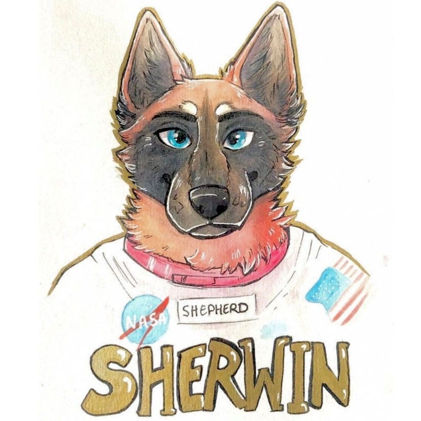 avatar for Sherwin Shepherd