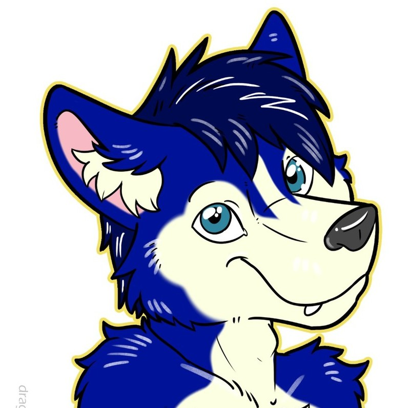 avatar for Jordy Husky
