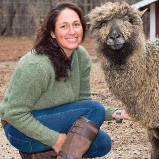 avatar for Long Island Yarn & Farm