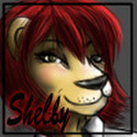avatar for Shelby Allen