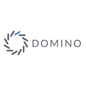 avatar for Domino
