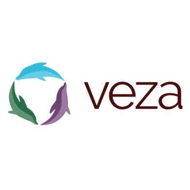 avatar for Veza Global