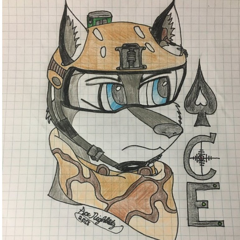 avatar for Ace Nightblitz