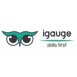 avatar for Igauge Labs Pvt Ltd