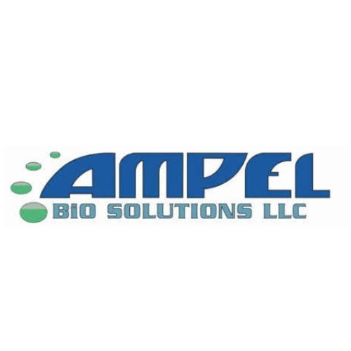avatar for AMPEL