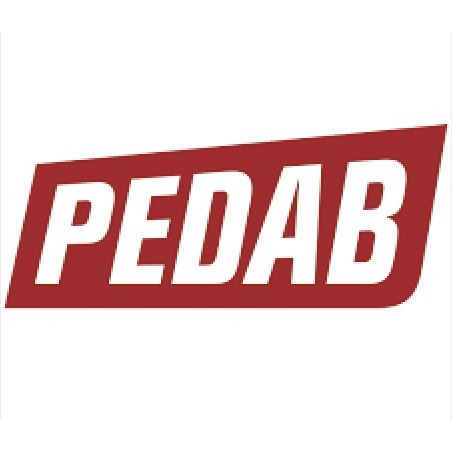 avatar for Pedab