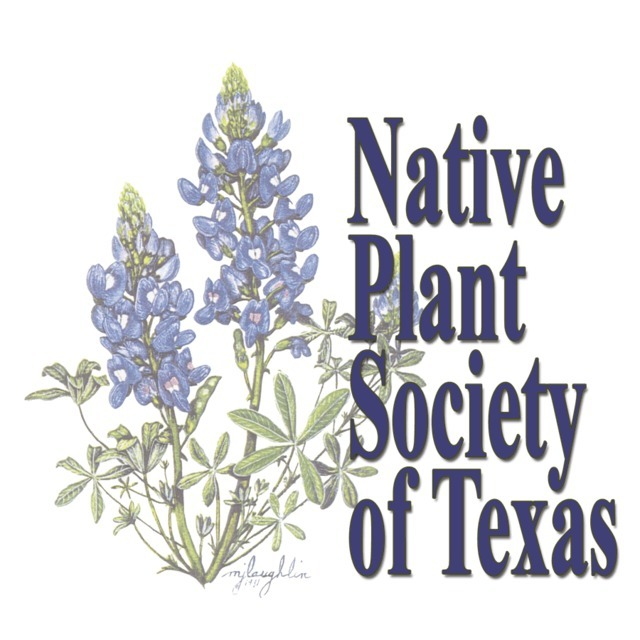 avatar for Native Plant Society of Texas