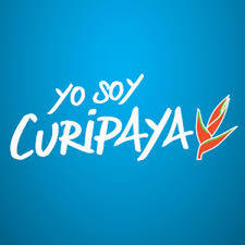 avatar for Yo Soy Curipaya