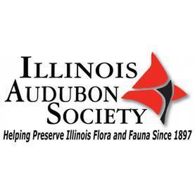 avatar for Illinois Audubon Society