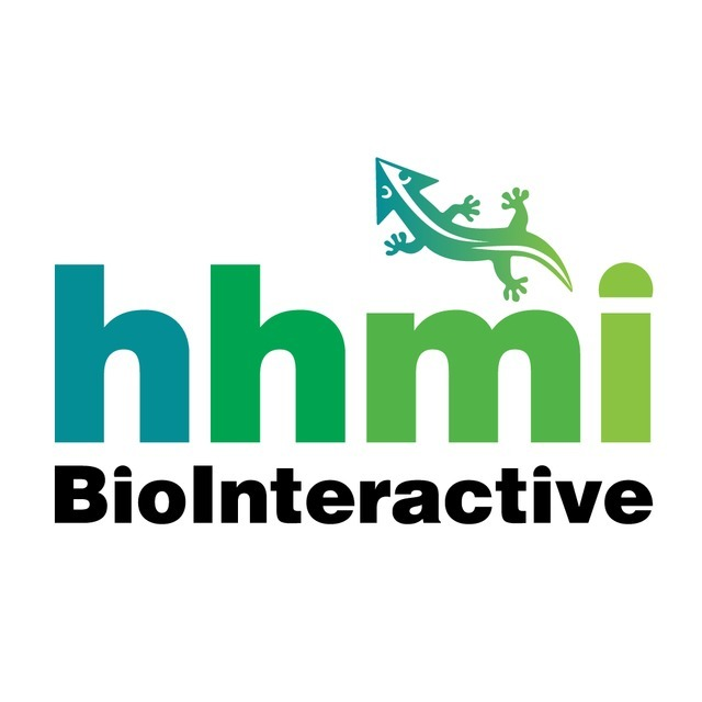 avatar for hhmi BioInteractive