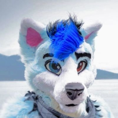 avatar for Cloud1516 Husky Landar