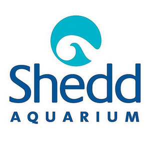 avatar for Shedd Aquarium