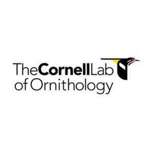 avatar for Cornell Lab of Ornithology