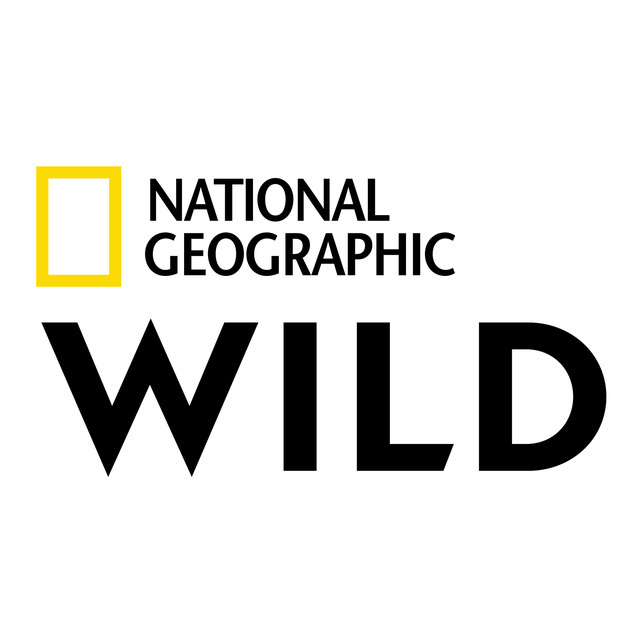 avatar for National Geographic Partners