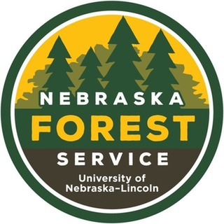 avatar for NE Forest Service