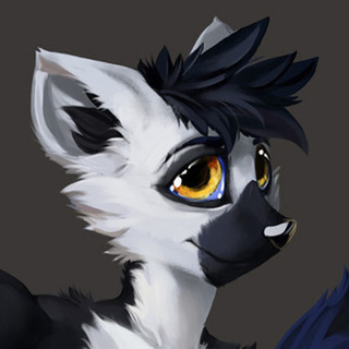 avatar for Skyler Ringtail