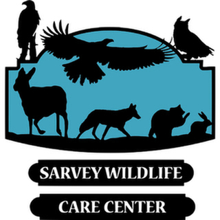 avatar for Sarvey Wildlife