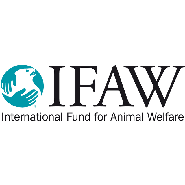 avatar for IFAW - International Fund for Animal Welfare